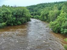 Река Ульбинка в половодье, биотоп гольяна лаговского. Фото Елены Лукиной.
