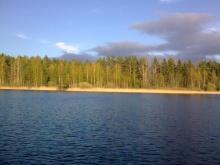 Глубокие омуты - излюбленное место язей (озеро Пирос). Фото Алексея Малышева.
