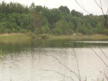 Биотоп жереха. Тверская область. Фото Алексея Малышева